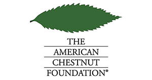 American Chestnut Foundation